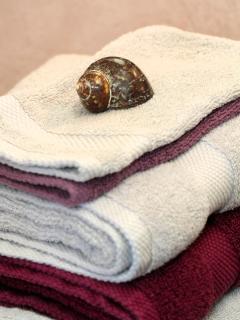 serviettes et draps fournis