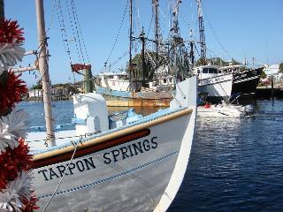 Easy Living in Tarpon Springs Condo