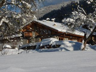 NATURE SKI LODGE STERWEN catered possible free shuttle to funicular ARC1600