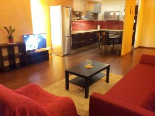 Apartaments in Vilnius Centre near the Parlament, Vilna