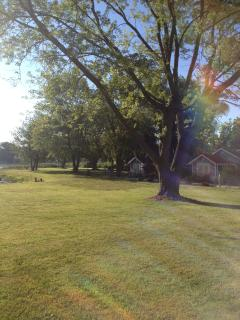 LARGE PRIVATE FROM YARD WITH SHADE TREE