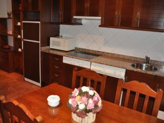 Apartamentos El Cazador - Apto nº 3, San Vicente de Toranzo