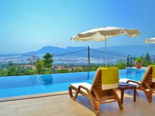Villa Cennet Bahcesi (7 Bedroom Large Villa)