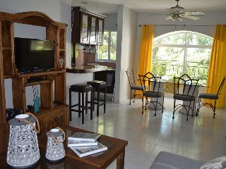 Beautiful condo down town near 5th ave. and beach, Playa del Carmen
