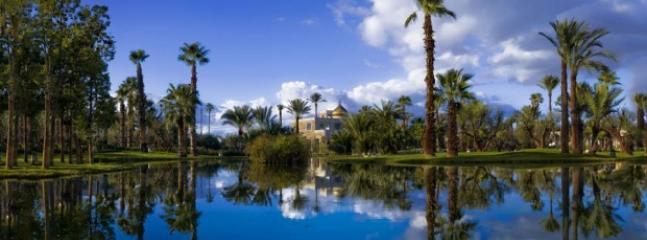 vue de la Palmeraie à Marrakech