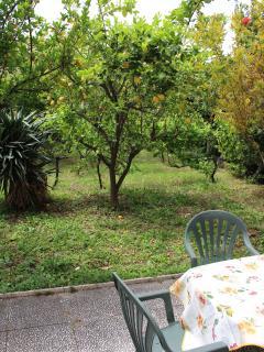 La terrazza nel giardino
