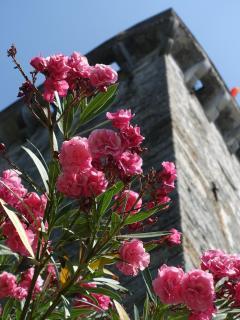 La Torre Medievale