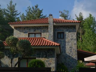 Moniatis Mountain Villa
