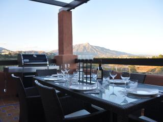 Lower terrace dining and gas bbq, with views of the famous La Concha mountain