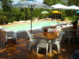 Beautiful holiday villa with saline pool, Sils