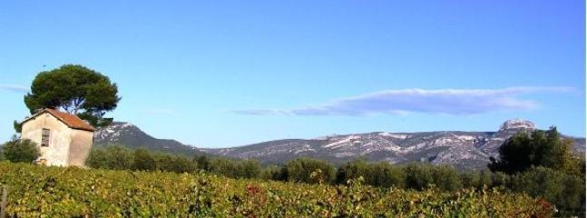 Surrounding countryside views - vineyards and mountains with sea close by
