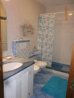 BATHROOM WITH SHOWER, DOWNSTAIR