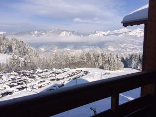 Spacious one bed ski apartment, Morillon