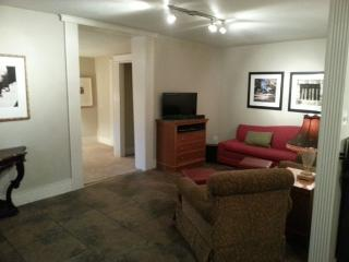 1BR Near Downtown 1920'S Era, Renovated Pets OK, San Antonio