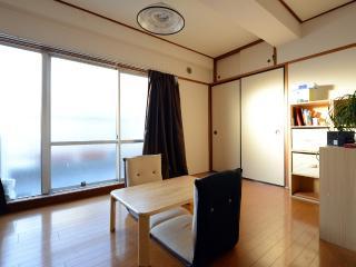Sunny apartment in Tokyo center, Bunkyō