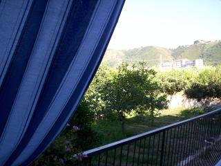 Vacanza al verde di Tropea ( trilocale 2)