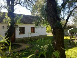 Pimienta - country house with shared pool on spacious finca near beaches & Vejer