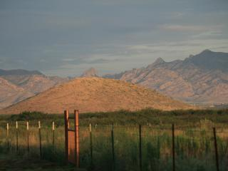 725WK ~ Bird Paradise Ranch 360 MT View~ Pearce AZ