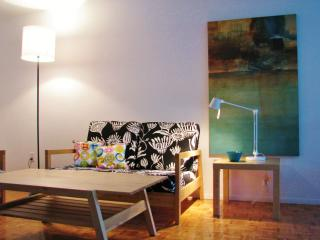 Clean, Bright and cozy, near Univ, Hospitals, Montreal