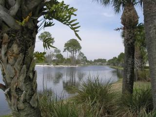 Just what you want! Perfect for golf, nature lover, Sarasota