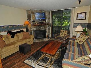 One Bedroom/One Bath Condo overlooking stream
