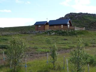 Cedar Log Cabin, 4 bed, Golden Circle, Iceland, Selfoss
