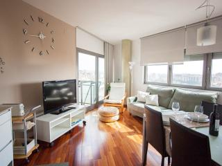 Little Home Torre Girona (81m2)