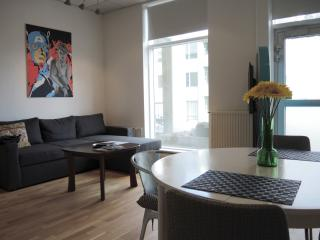 New apartment in Reykjavik city center