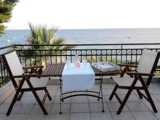 Luxury apartment in a complex with a private beach, Mola Kalyva