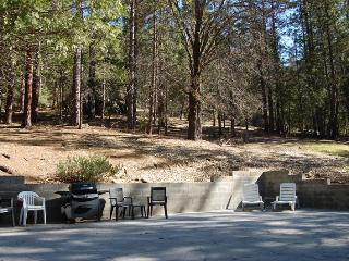 Front outdoor area with gas grill. National forest to the north and east of cabin