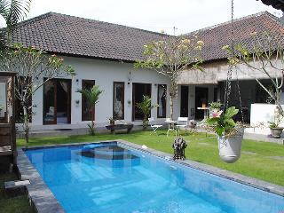 Beautiful 2 bedroom Villa Canggu