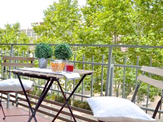 Spacious and quiet apartment!!!, Barcelona