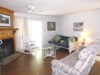 263 Driftwood Villa - Wyndham Ocean Ridge, Edisto Island
