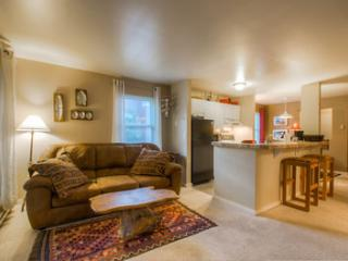 Fall Line #110 (2 bedrooms, 1 bathroom), Telluride