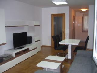 Apartment near center of Zagreb for 3-5 guests, Zagabria