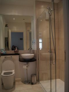 Shower room with large walk-in shower.