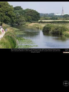 Chichester canal,- just a short walk away.