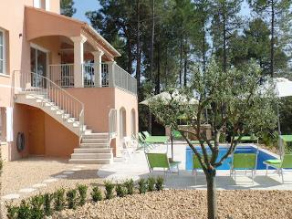 Vaison-La-Romaine, Villa 10p in the vineyards, exceptional comfort