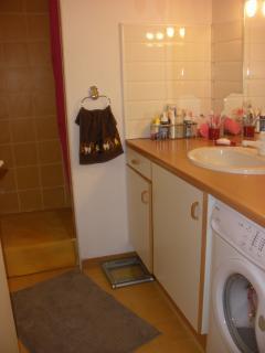 salle de bains / lave-linge