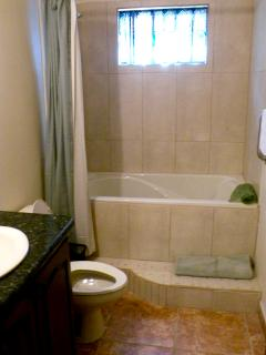 Guest Bath with tub/shower - perfect for bathing kids!
