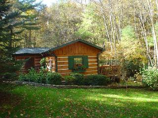 LOG CABIN WITH GUEST HOUSE AND OUTDOOR FIREPLACE, HOT TUB, WIFI & CREEK!