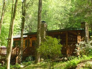 LOG CABIN W/GUEST HOUSE & OUTDOOR F/P, HOT TUB, & WIFI! BOOK EARLY!