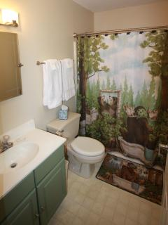 upstairs wilderness room bath