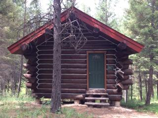 Log cabin in the wood