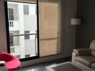 One Bedroom Aparment on main Pedestrian Street, Montevideo