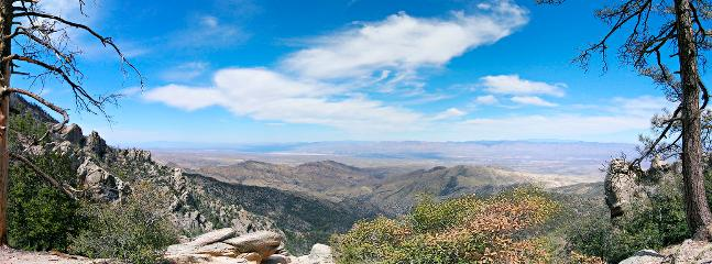 View from Mt Lemmon (by Mike Fulbright)
