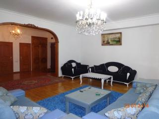 Condo In The Center Of Baku