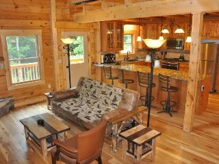 The Scratching Post - Upscale 3 Bedroom Cabin Near Fontana Lake with Dry Sauna, Almond