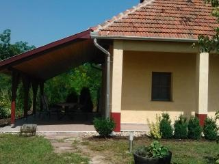 Holiday House East Hungary with terrace and garden, Borsod-Abauj-Zemplen County