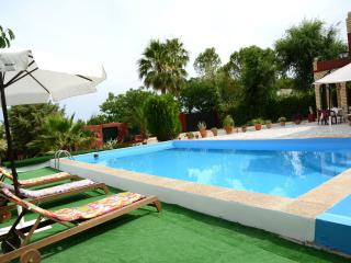 Holiday house in Countryside Seville, wifi free, La Puebla de Cazalla